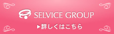 SELVICE GROUP